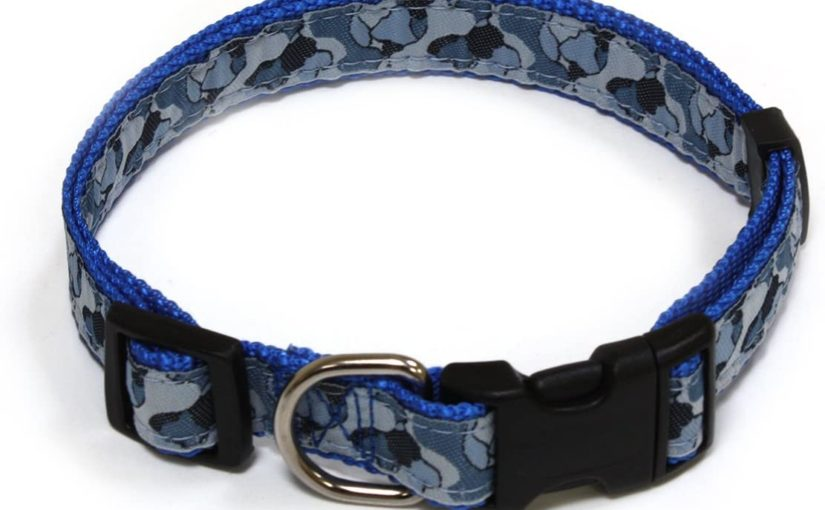 Croci Regolare Nylon Coll Extreme, 20 mm x 35 – 55 cm, Blu