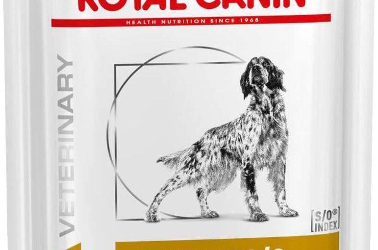 ROYAL CANIN Urinary S/O Cibo moderato Calorie Calorie, Scatola 12x100G